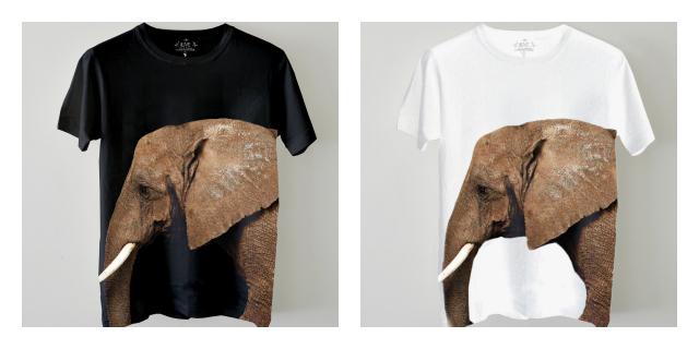 Edun Ryan Mcginley african elephant wildaid.org