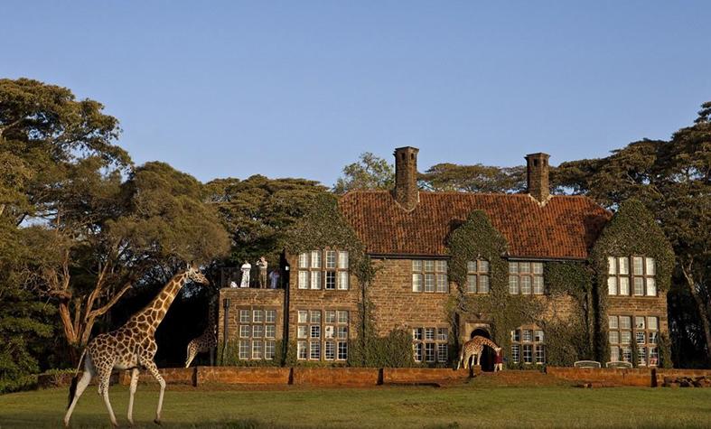 1. Giraffe_Manor