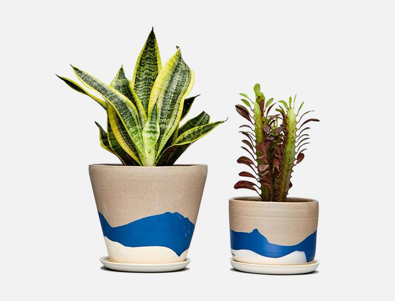 beach planters
