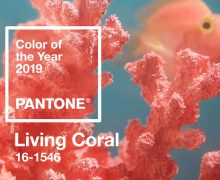 pantone-color-of-the-year-2019-living-coral-banner-mobile