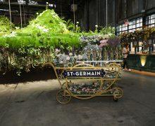 Maison St.Germain floating flower installation