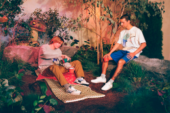 adidas skateboarding and alltimers collection