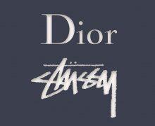 dior stussy